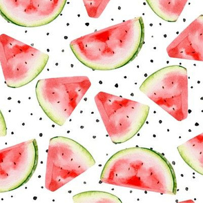 Rrrrwatermelon_shop_thumb