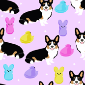 tri corgi easter dog peeps - peeps fabric, dog fabric, corgi fabric, cute dog, dogs fabric - purple