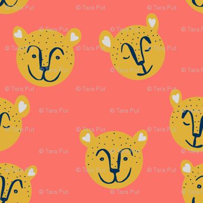 Hello Cheetahs on Coral