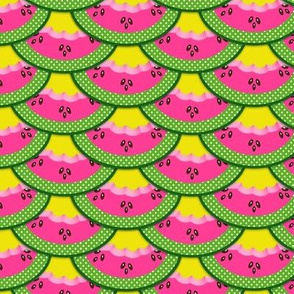 PINK WATERMELON SLICES ON YELLOW BACKGROUND