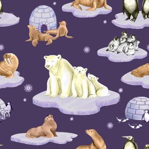 Arctic Adventure (purple)