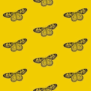 Solo Butterfly - smaller scale- yellow