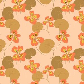 Nasturtium Peach