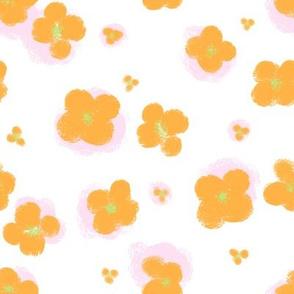 Marthe citrus