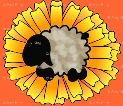 Calendula Sheep