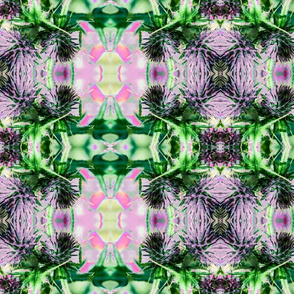 Thistle Tartan -Pink and Green