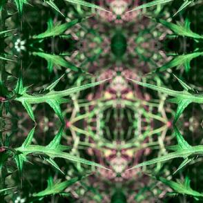Geometric Spike