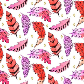 Red and pink Feathers