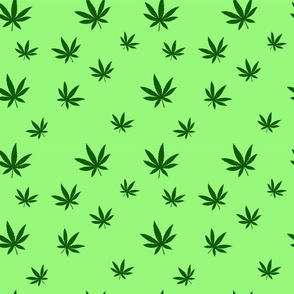 pattern of cannabis or marijuana