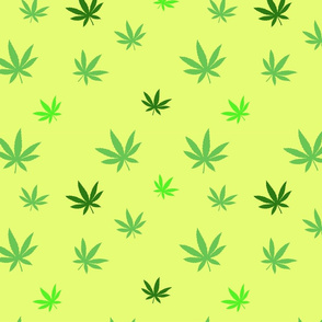 pattern of cannabis or marijuana leaves