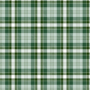 Green and white plaid.