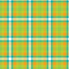 Orange, blue and green plaid.