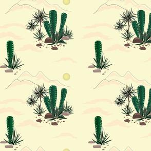 Sunny desert.