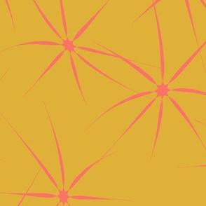 StarSplash_GoldCoral-01