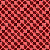 Ladybug Square Dance
