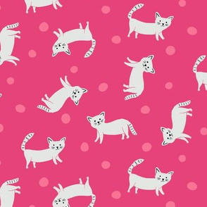 Cats all over on Pink