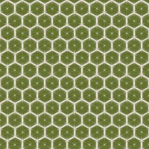 Shibori honeycomb in olive