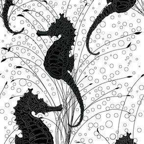 Seahorses White and Black