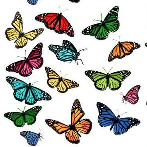 rainbow monarchs
