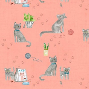 hey cat! russian blue on blush