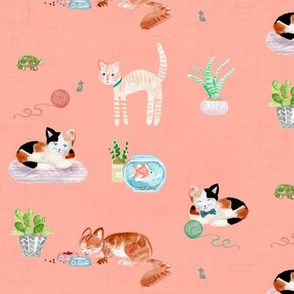 hey cat! calico on blush pink