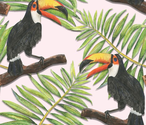 Rtoucan-and-palm-leaf_contest235558preview