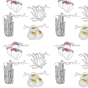 Pen and Ink Cacti