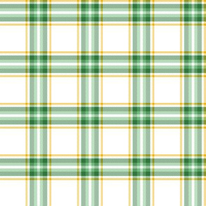 green and gold st. patrick's plaid