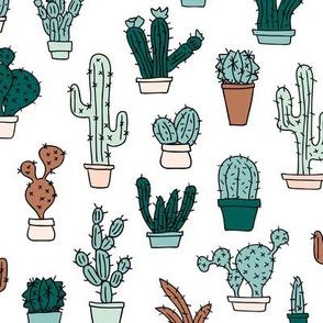 Cactus cacti garden botanical succulent green garden pattern illustration print Mint green brown boys