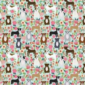 SMALL - pitbull pitbull terriers cute dogs dog sweet animals florals mint dog pets