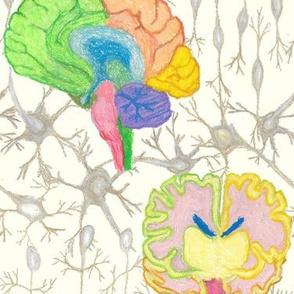 It's Brain Science