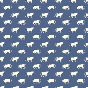 bulls on blue