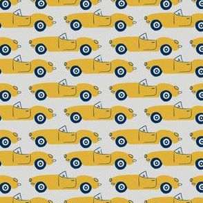 roadster in grey