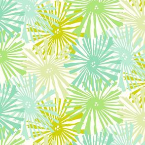 Cactus blooms Lemon Lime