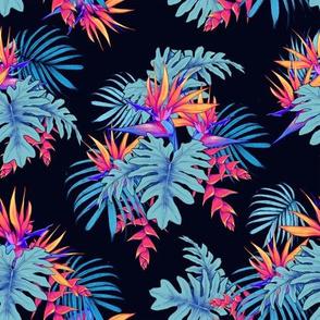 neon birds of paradise