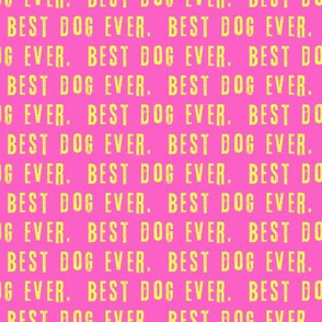 best dog ever.  - yellow on pink LAD19