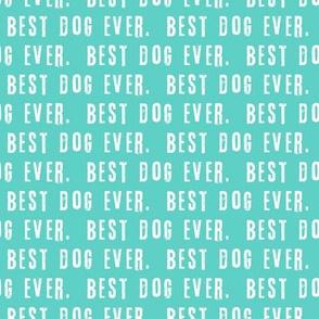 best dog ever.  blue LAD19