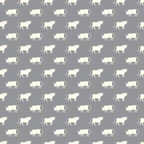 bulls on grey