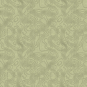 topography_eco_green_sage