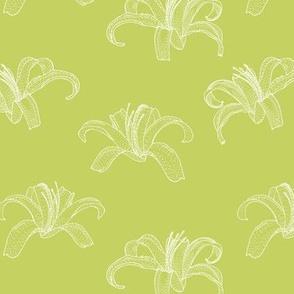 Botanical - HEREMO LIGHT - green