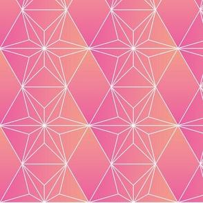 cactus geometric pink orange desert