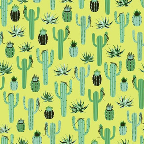 cactus - lime background