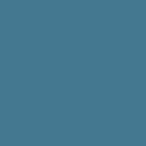 Wedgewood-Blue Solid Plain