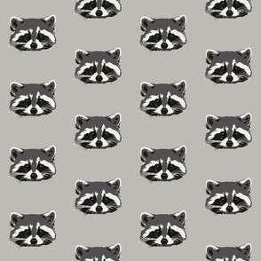 Randall the raccoon in grey - small