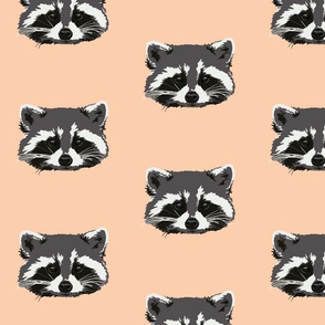 Randall the raccoon in peach