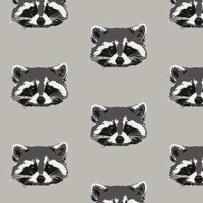 Randall the raccoon in grey