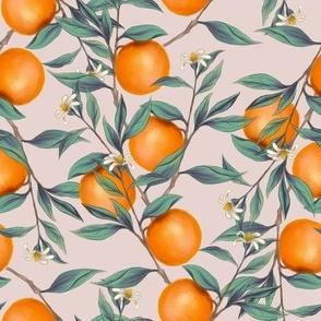 oranges on beige