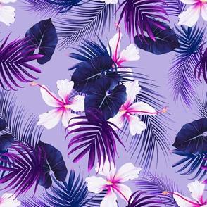 hibiscus purple bloom
