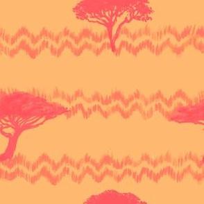 Peach Acacias