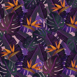 tropical pattern v1